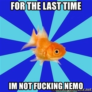 Absentminded Goldfish - for the last time IM NOT FUCKING NEMO