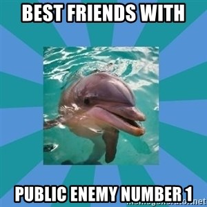 Dyscalculic Dolphin - Best friends with  Public enemy number 1