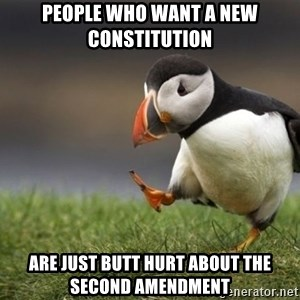 Unpopular Opinion Puffin - People who want a new Constitution are just butt hurt about the second amendment