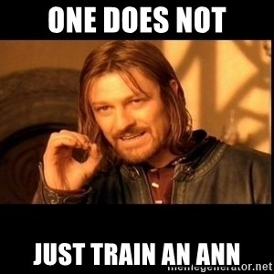 one does not  - one does not just train an ann