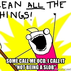 "clean all the things -  Some call me OCD, I call it ""not being a slob"""