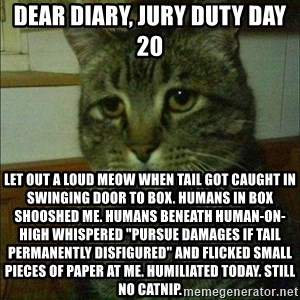 "Depressed cat 2 - Dear Diary, jury duty day 20 Let out a loud meow when tail got caught in swinging door to box. Humans in box shooshed me. Humans beneath human-on-high whispered ""pursue damages if tail permanently disfigured"" and flicked small pieces of paper at me. Humiliated today. Still no catnip."