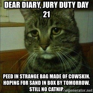 Depressed cat 2 - Dear Diary, Jury Duty Day 21 Peed in strange bag made of cowskin. Hoping for sand in box by tomorrow. Still no catnip.