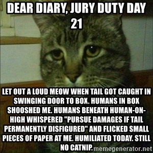 "Depressed cat 2 - Dear Diary, Jury Duty day 21 Let out a loud meow when tail got caught in swinging door to box. Humans in box shooshed me. Humans beneath human-on-high whispered ""pursue damages if tail permanently disfigured"" and flicked small pieces of paper at me. Humiliated today. Still no catnip."