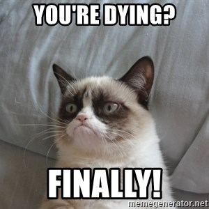 Grumpy cat good - You're dying? FINALLY!