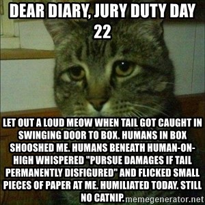 "Depressed cat 2 - Dear Diary, Jury Duty day 22 Let out a loud meow when tail got caught in swinging door to box. Humans in box shooshed me. Humans beneath human-on-high whispered ""pursue damages if tail permanently disfigured"" and flicked small pieces of paper at me. Humiliated today. Still no catnip."