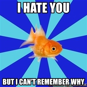 Absentminded Goldfish - I hate you But I can't remember why