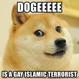 Dogeeeee - Dogeeeee is a gay islamic terrorist
