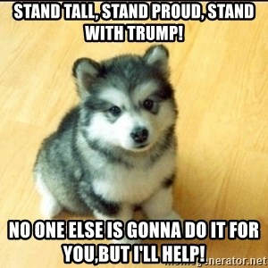 Baby Courage Wolf - stand tall, stand proud, stand with trump! no one else is gonna do it for you,But i'll help!