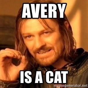 One Does Not Simply - Avery  Is a cat
