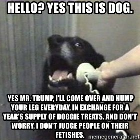 hello? yes this is dog - hello? yes this is dog.  yes mr. trump, i'll come over and hump your leg everyday, in exchange for a year's supply of doggie treats. and don't worry, i don't judge people on their fetishes.