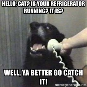 hello? yes this is dog - Hello, cat? is your refrigerator running? it is? well, ya better go catch it!