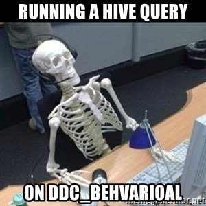 Skeleton computer - Running a Hive query on DDC_BEHVARIOAL