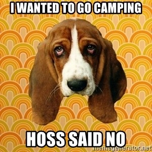 SAD DOG - I wanted to go camping Hoss said no