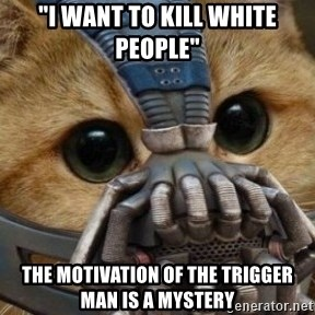 """bane cat - """"I want to kill white people"""" the motivation of the trigger man is a mystery"""