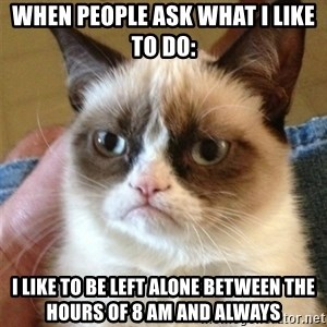 Grumpy Cat  - WHEN PEOPLE ASK WHAT I LIKE TO DO: I LIKE TO BE LEFT ALONE BETWEEN THE HOURS OF 8 AM AND ALWAYS