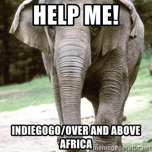 Eating Disordered Elephant  - HELP ME! Indiegogo/Over And Above Africa