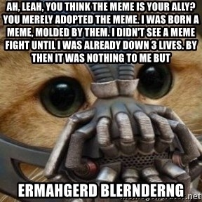 bane cat - ah, leah, you think the meme is your ally? You merely adopted the meme. i was born a meme, molded by them. i didn't see a meme fight until i was already down 3 lives. By then it was nothing to me but  ermahgerd blernderng