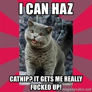 I can haz - I can haz catnip? It gets me really fucked up!