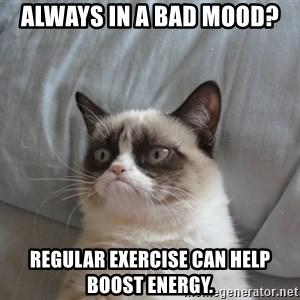 moody cat - always in a bad mood? Regular exercise can help boost energy.