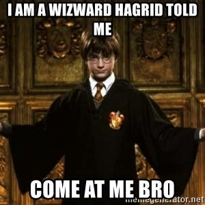 Harry Potter Come At Me Bro - I AM A WIZWARD HAGRID TOLD ME COME AT ME BRO
