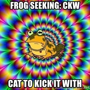 hypno toad - Frog seeking: CKW Cat to kick it with
