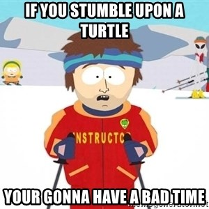 You're gonna have a bad time - IF YOU STUMBLE UPON A TURTLE YOUR GONNA HAVE A BAD TIME