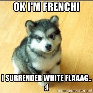 Baby Courage Wolf - ok I'm french! I surrender white flaaag.. :(