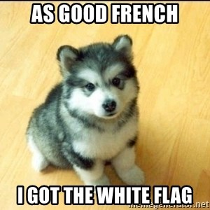 Baby Courage Wolf - as good french I got the white flag