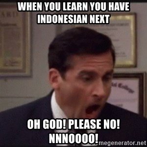 michael scott yelling NO - When you learn you have Indonesian next OH GOD! PLEASE NO! NNNOOOO!