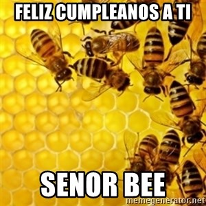 Honeybees - Feliz Cumpleanos a Ti Senor Bee