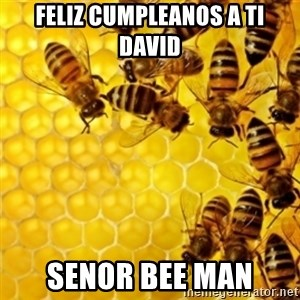 Honeybees - Feliz Cumpleanos a Ti David Senor Bee Man