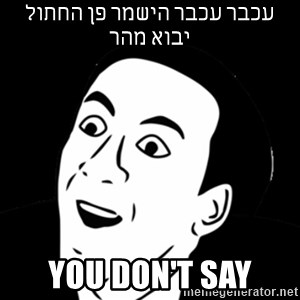 you don't say meme - עכבר עכבר הישמר פן החתול יבוא מהר You don't say