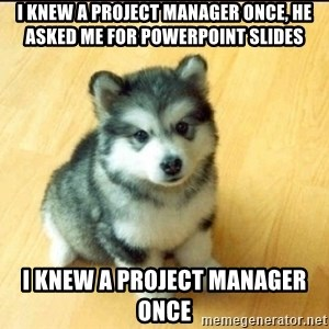 Baby Courage Wolf - I knew a Project Manager once, he asked me for powerpoint slides I knew a Project Manager once