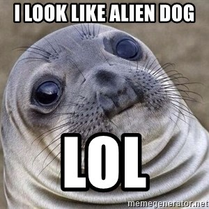 Awkward Seal - i look like alien dog  lol