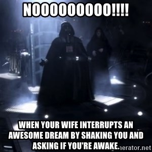 Darth Vader - Nooooooo - Nooooooooo!!!! When your wife interrupts an awesome dream by shaking you and asking if you're awake.