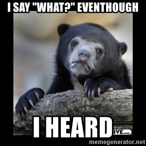 "sad bear - I say ""what?"" eventhough i heard"