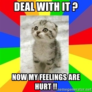 Cute Kitten - DEAL WITH IT ? NOW MY FEELINGS ARE HURT !!
