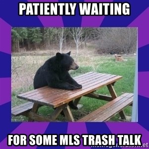 waiting bear - patiently waiting for some MLS trash talk