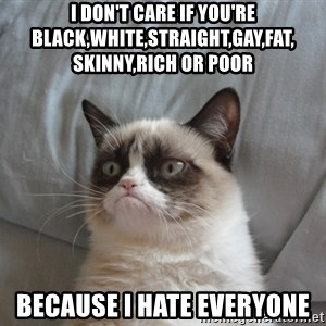 Grumpy Cat  - I don't care if you're black,white,straight,gay,fat, skinny,rich or poor because i hate everyone