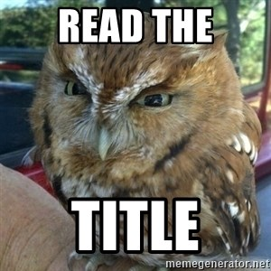 Overly Angry Owl - Read the Title