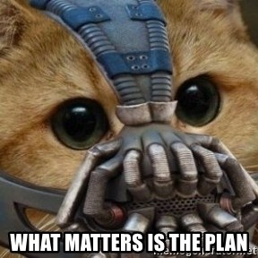 bane cat -  WHAT MATTERS IS THE PLAN