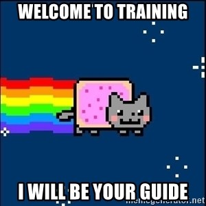 Irresponsible Nyan Cat - Welcome to Training I will be your guide