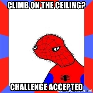 Spodermin - climb on the ceiling? CHALLENGE ACCEPTED