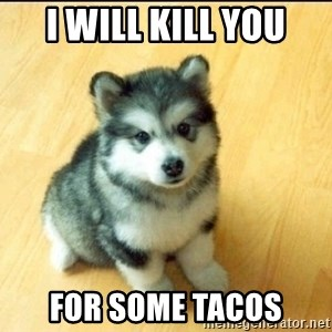 Baby Courage Wolf - I will kill you for some tacos