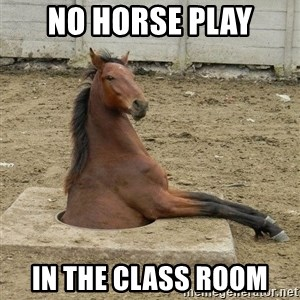 Hole Horse - no horse play in the class room