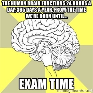 Traitor Brain - The human brain functions 24 hours a day, 365 days a year, from the time we're born until... exam time