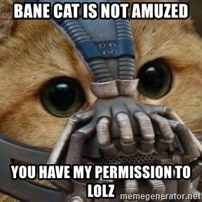 bane cat - Bane cat is not amuzed you have my permission to lolz