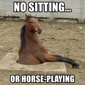 Hole Horse - no sitting... or horse-playing