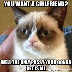 Grumpy Cat  - you want a girlfriend? Well the only pussy your gonna get is me